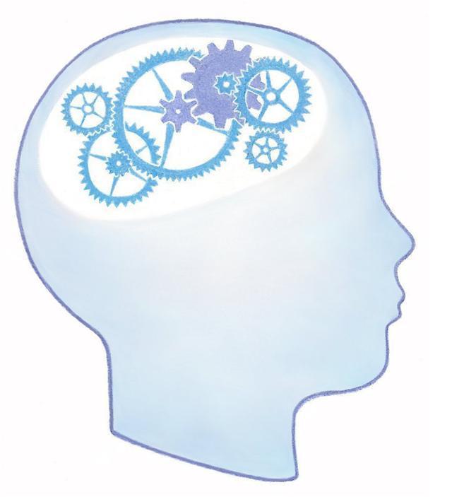 Psychologie De Comptoir Gt Test Scientifique 202 Tes Vous