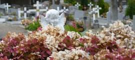 cimetière, est, rennes
