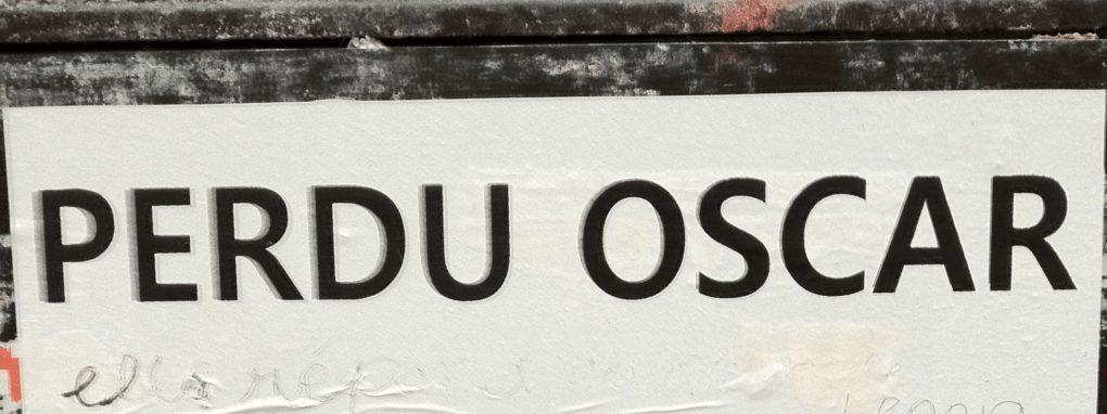 Oscar, Rennes, Unidivers, mouche, disparition