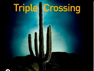 rotella, Sebastian Rotella, Tripple Crossing, liana levi, unidivers