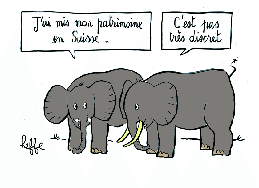 michel_h_ elephants