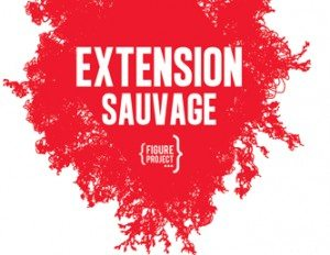 extension sauvage, festival, rennes