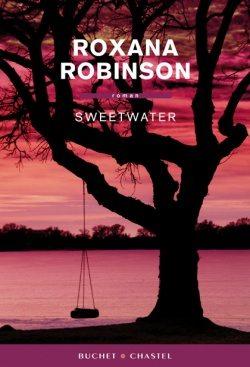 roxana robinson, streetwater