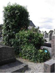 cimetière du nord, rennes