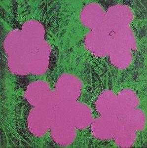 Sturtevant flower