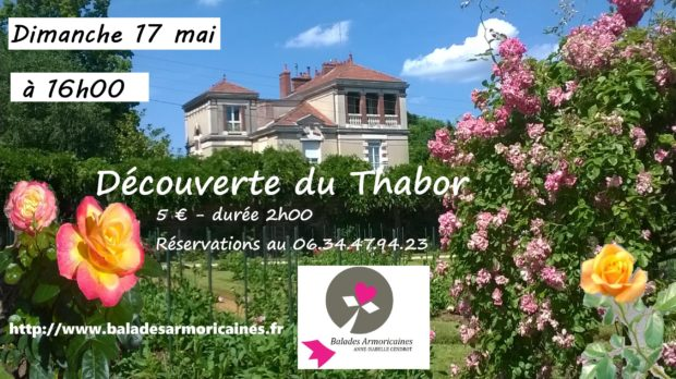 accroche thabor