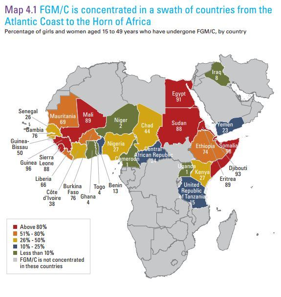 carte-afrique-excision