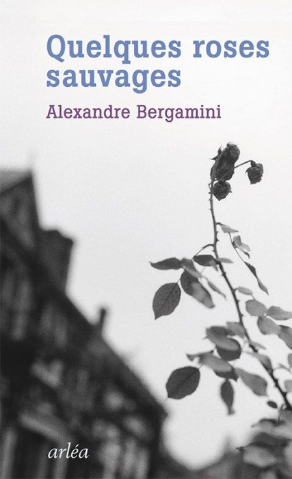 quelques roses sauvages alexandre bergamini