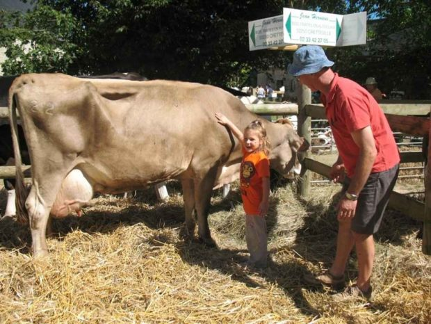 11e édition du festival Vaches en fête ! à la ferme-musée Sainte-Mère-Église