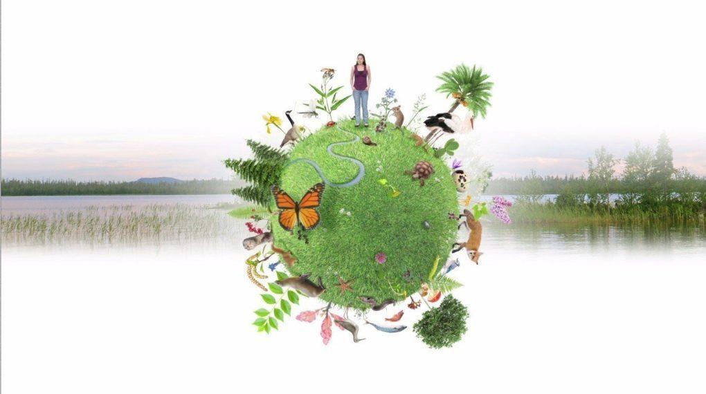 biodiversité Rennes