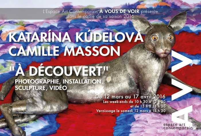 Exposition À découvert Loire-Authion