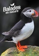 La nature au fil des sens avec la LPO 44 Blain