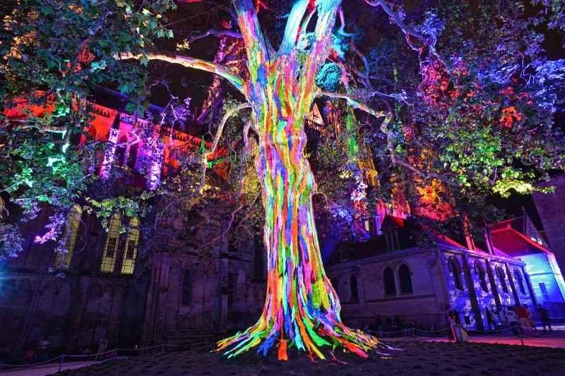 Rendez-vous à la cathédrale Les lumières de la liberté Bayeux