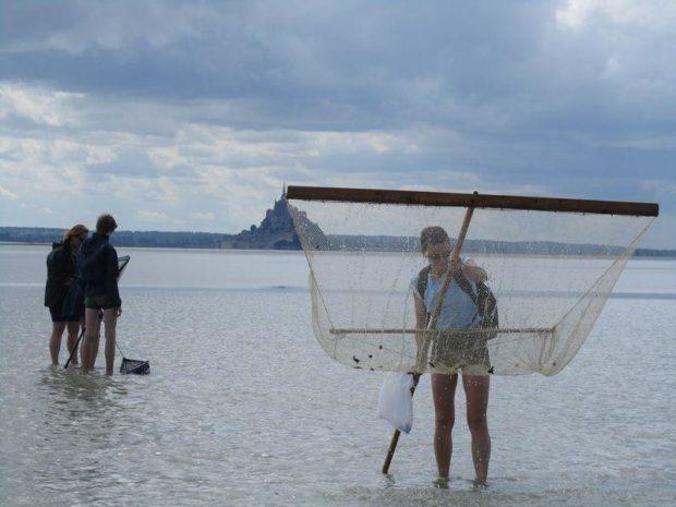 Sur les pas des coureurs de grèves sortie pêche à pied Vains