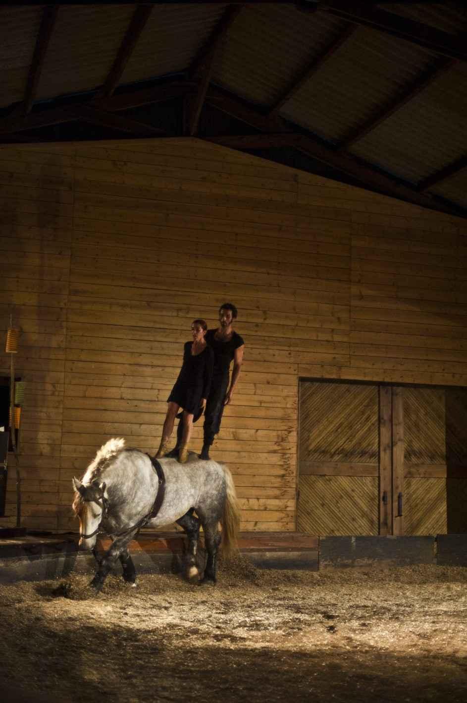 Théâtre équestre, Terre, par la compagnie Volti Subito Taden
