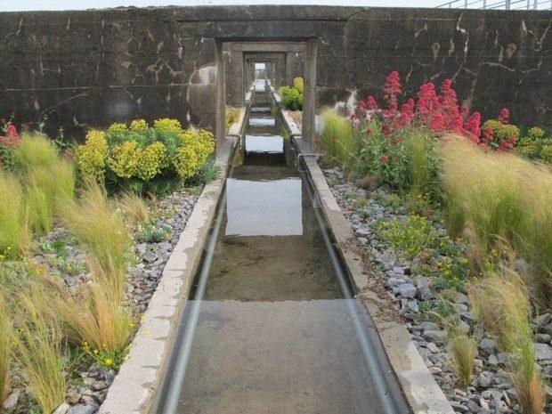 Jardins d'artistes - Les jeudis du centre d'art contemporain Château-Gontier