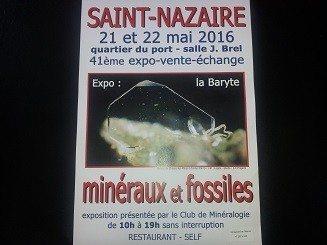 41e Exposition Minéraux et Fossiles Saint-Nazaire