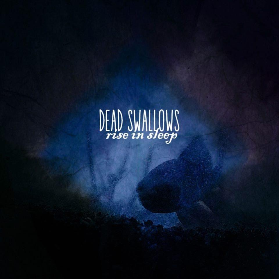Dead Swallows (pop psyché) Nantes