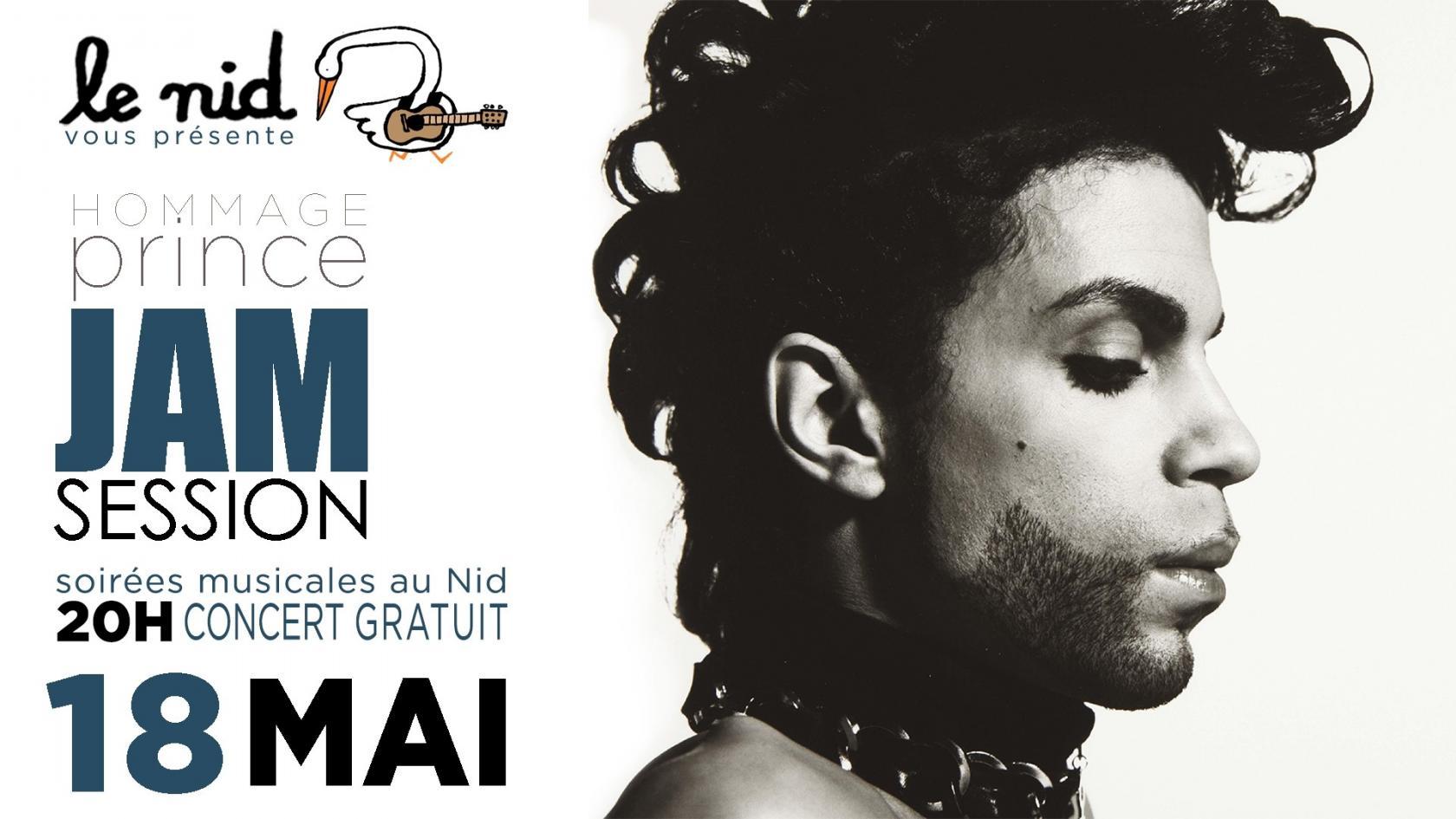 Jam Session Hommage à Prince Nantes