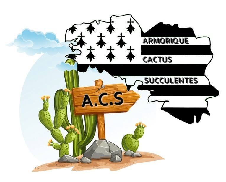 armorique cactus succulentes ACS