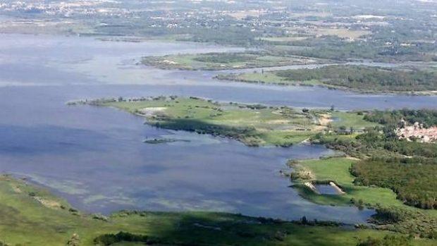 Dans secrets du lac Grand Lieu Nantes