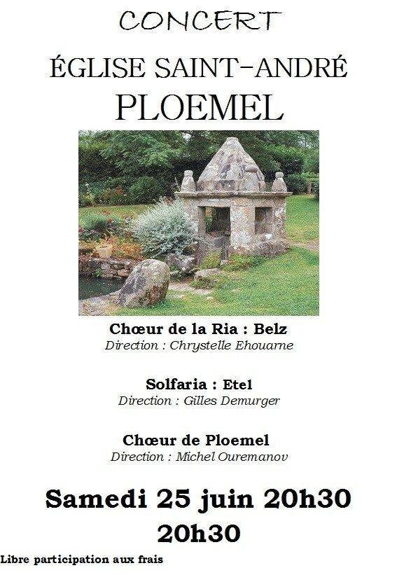 Le chœur Plœmel Ploemel