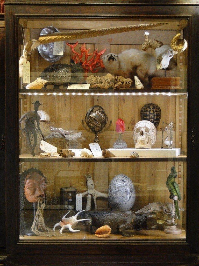 Un cabinet de curiosités à Ranrouët Herbignac