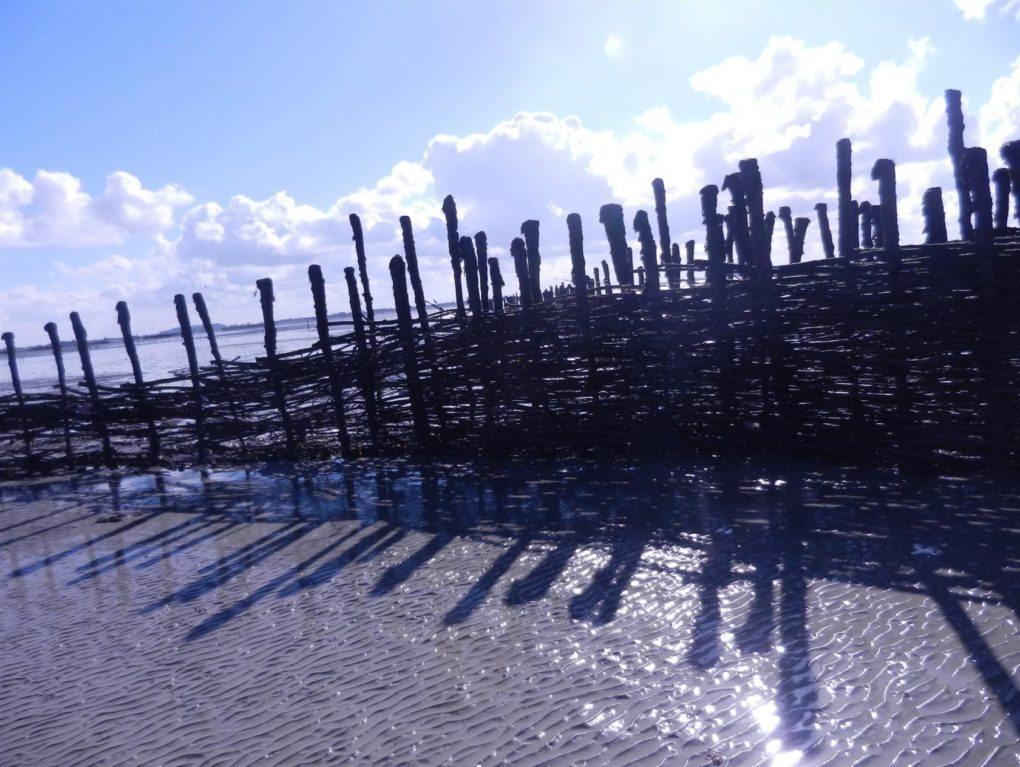 À la découverte des pêcheries Saint-Broladre