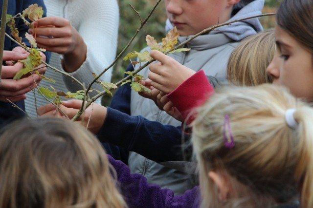 Atelier nature pour les 4-10 ans Notre-Dame-de-Monts