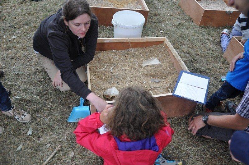 Atelier participatif archéologique tous les jeudis Plussulien
