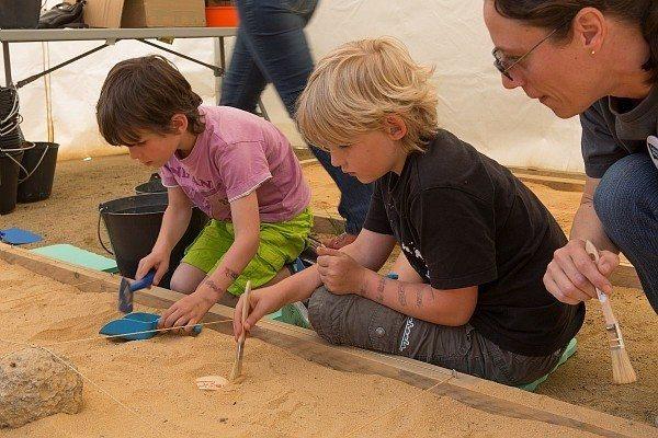 Carré de fouilles : atelier à partir de 6 ans Châteaubriant