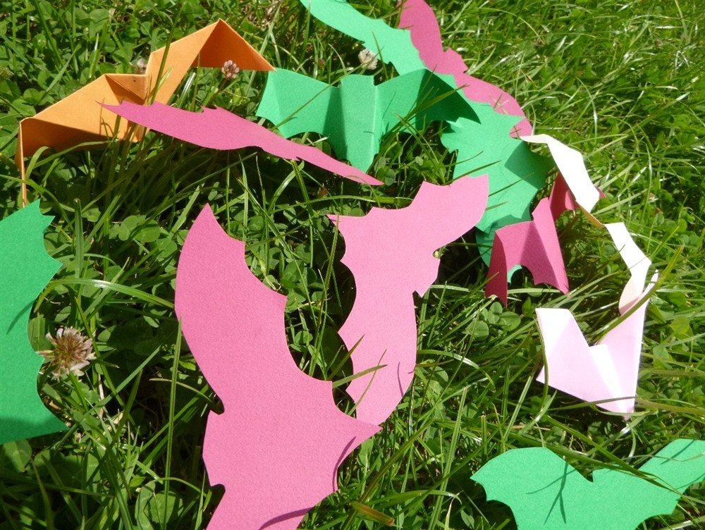Les chauves-souris expliquées aux enfants Clohars-Carnoët