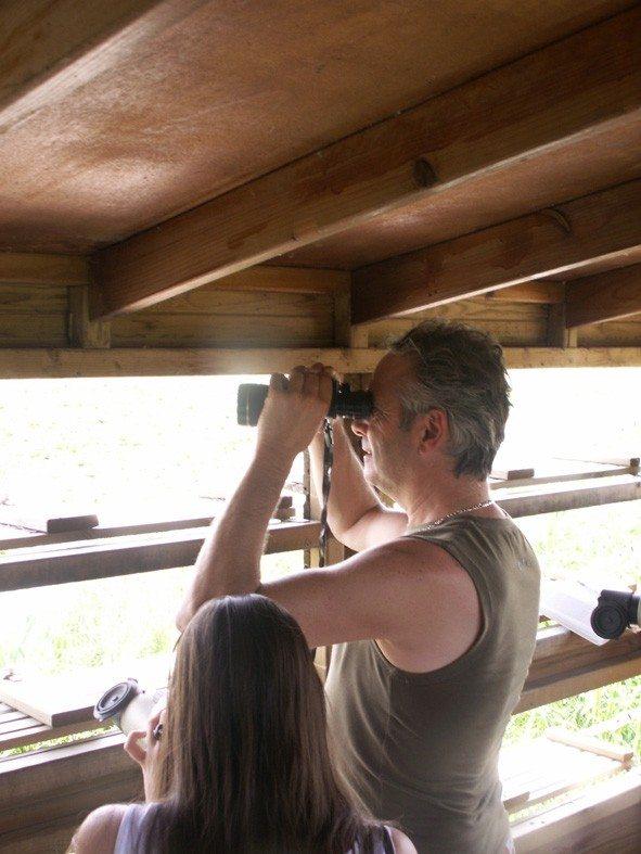 Observation d'oiseaux commentée Saint-Aignan-Grandlieu