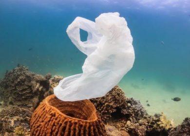 océans plastique