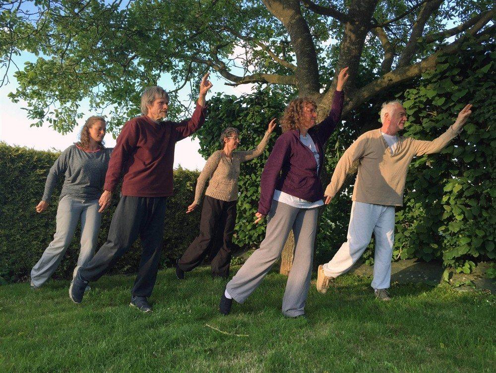 Reprise des cours de tai-chi-chuan et qi-gong Saint-Hilaire-du-Harcouët