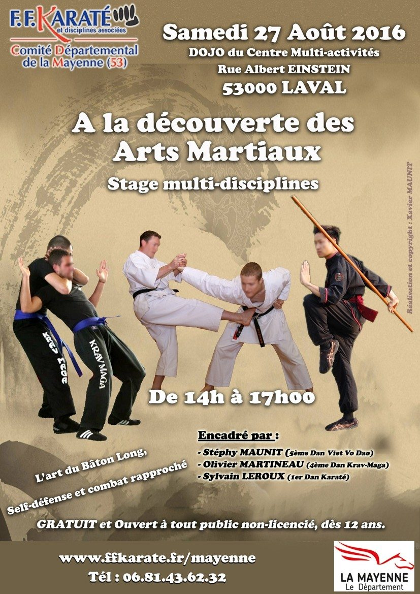 Stage gratuit d couverte des arts martiaux laval for Origine des arts martiaux