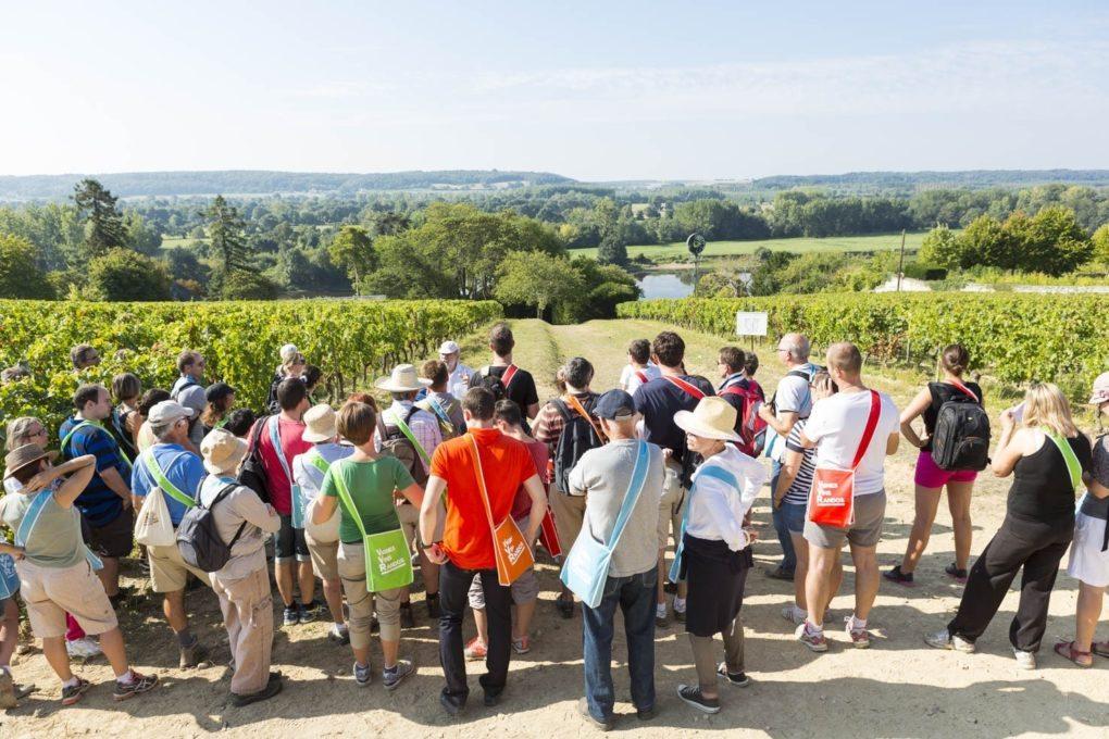 Vignes Vins Randos Orée-d'Anjou