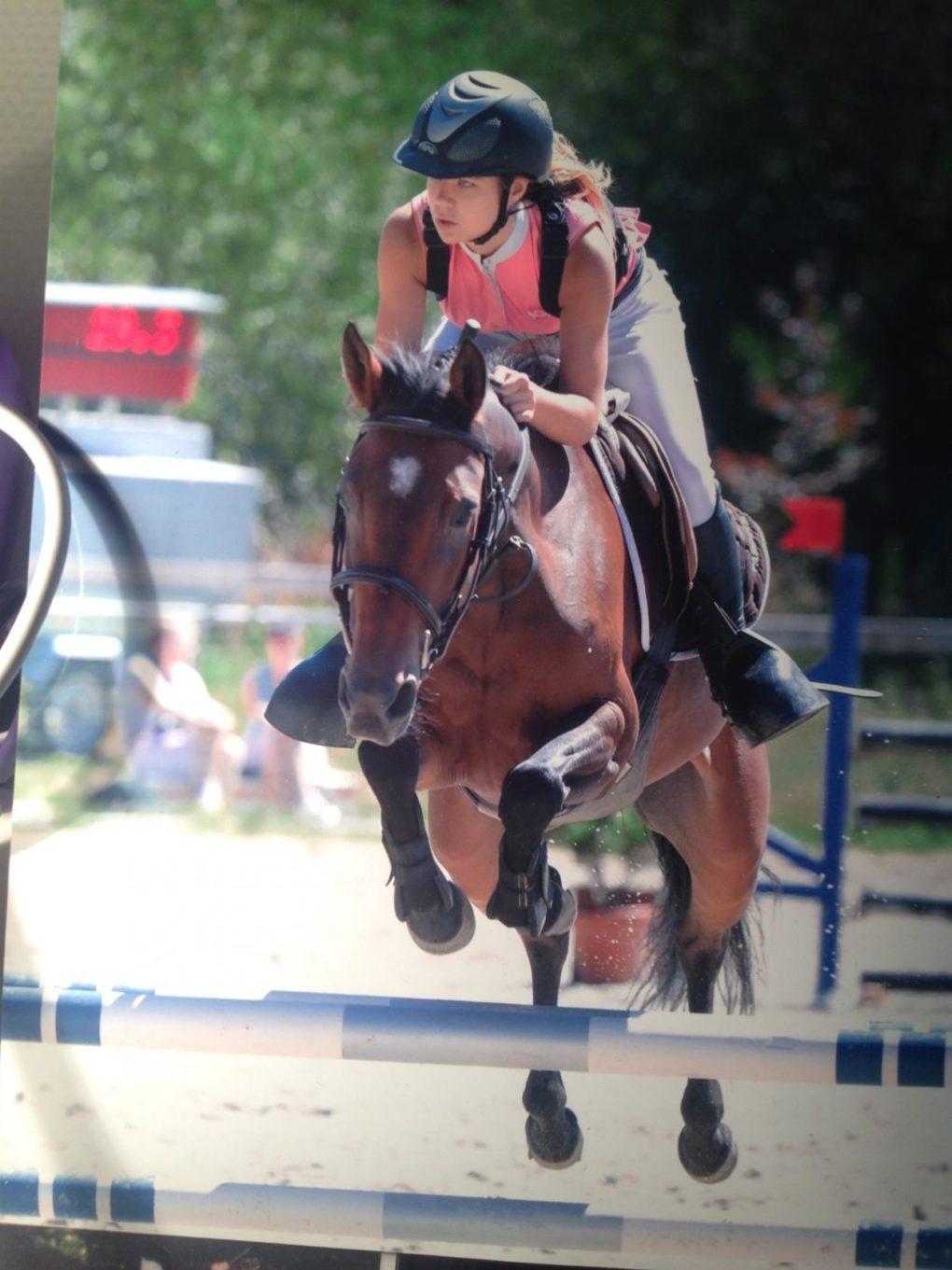 Équitation : concours de saut d'obstacles Quéven