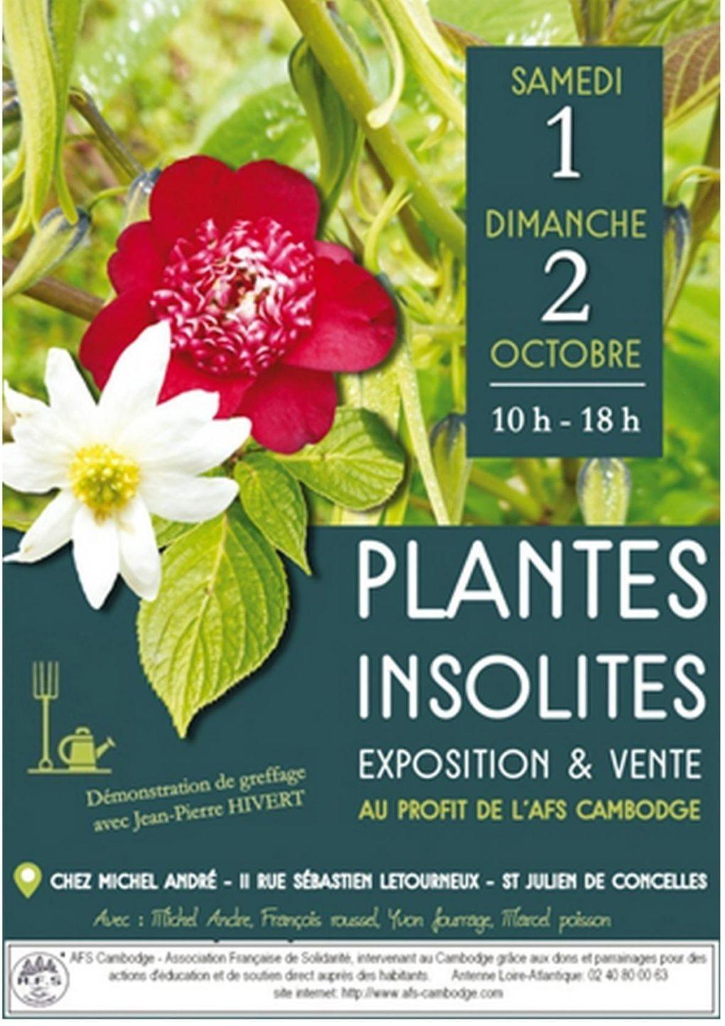 Exposition-vente de plantes insolites Saint-Julien-de-Concelles