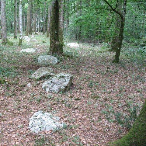 L'alignement mégalithique du Pilier en forêt du Gâvre Le Gâvre