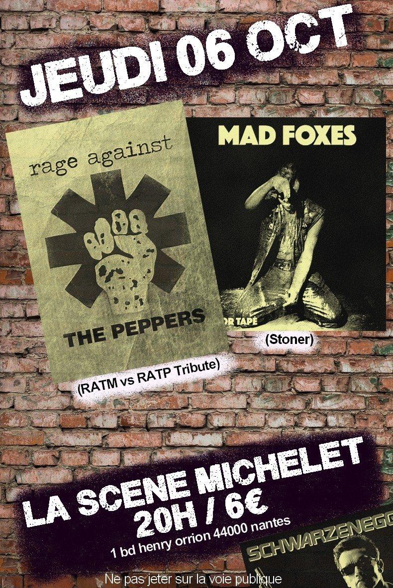Rage Against The Peppers + Guest @ La Scène Michelet Nantes