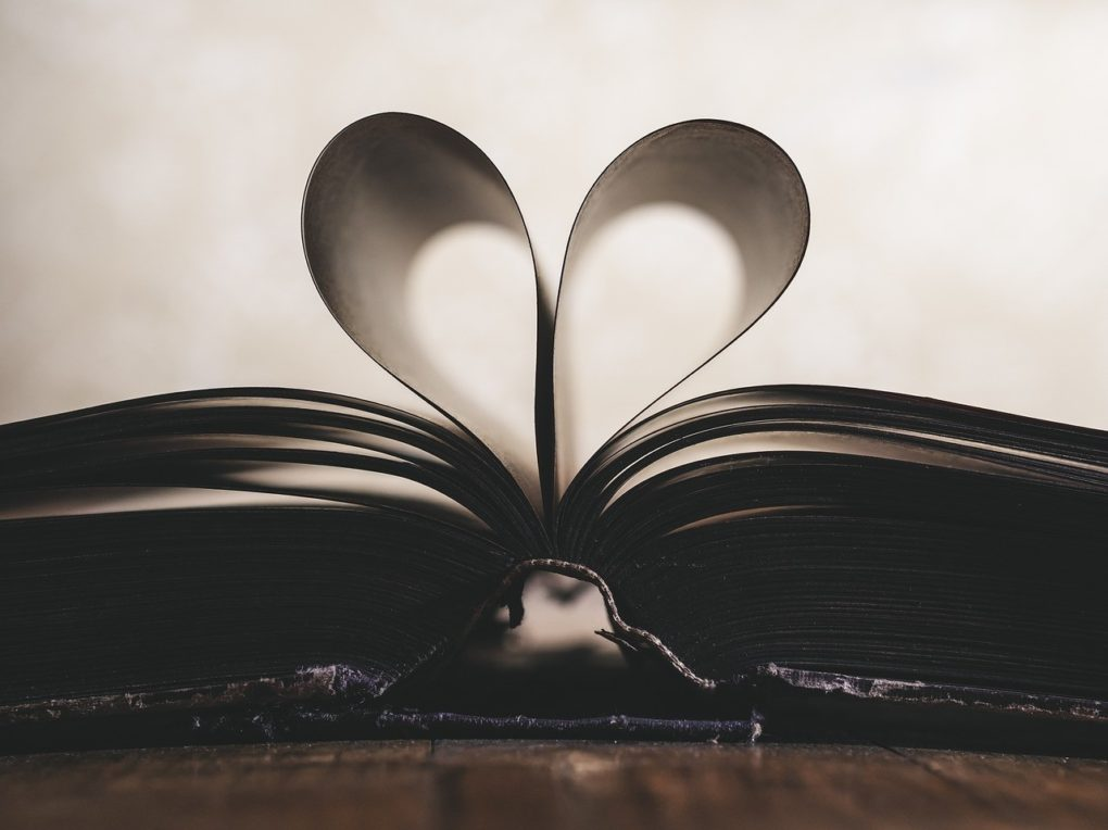 Rentrée littéraire : les coups de cœur des bibliothécaires Les Ponts-de-Cé