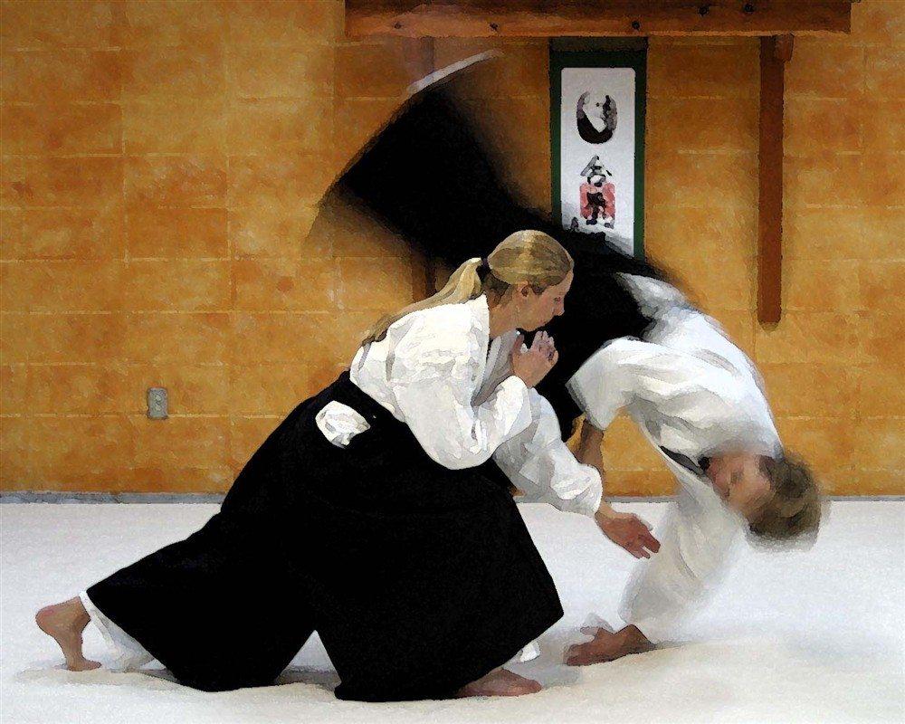 Reprise des cours au club aïkido Legé