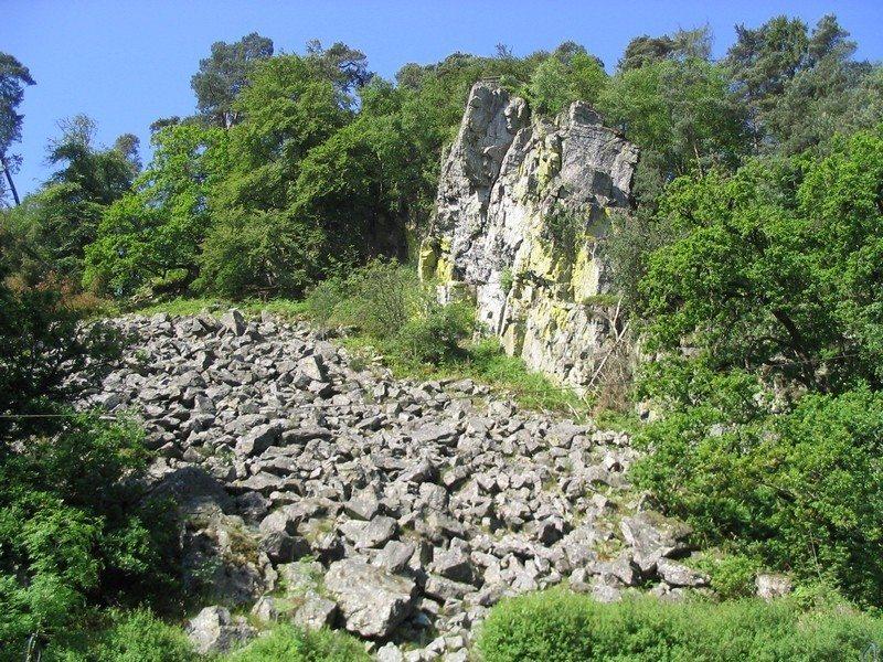 Sortie nature : de Bagnoles-sur-Mer à Bagnoles sur glace Bagnoles-de-l'Orne-Normandie