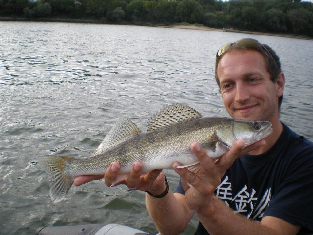 Stage d'initiation, pêche au leurre Savenay