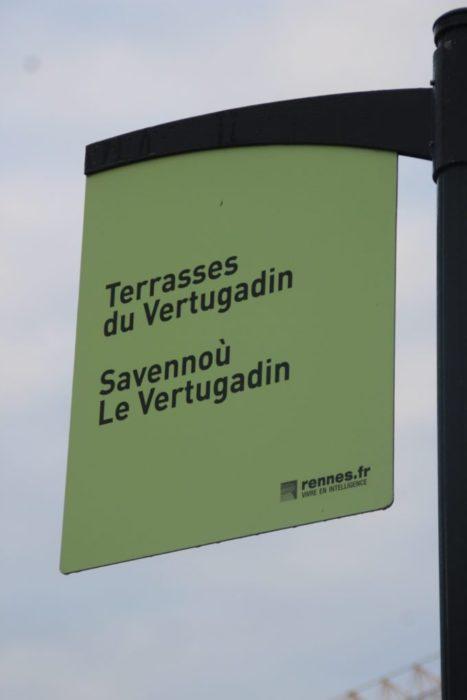 rennes_croisiere-urbaine_vue-vilaine_architecture-rennes_terrasses-vertugadin