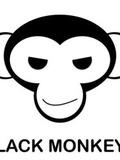 Black-Monkeys-Toulouse-concert