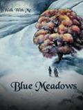 Blue-Meadows-Toulouse-concert