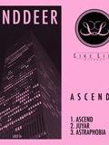Leendder-Nantes-concert