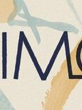Rimo-Nantes-concert